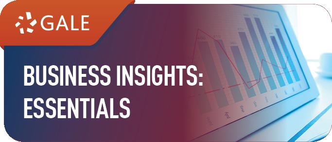 Business Insights Essentials