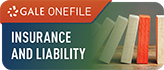 Insurance and Liability Icon