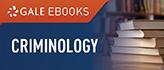 Criminology Web Icon