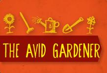 The Avid Gardener